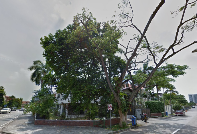 Siglap Ave with tree 02 2014