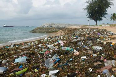 Müll am Strand 2